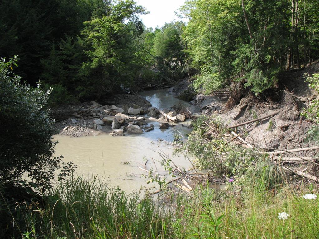 Buttermilk Cr downstream of spillway, note large trees in debris dam in background