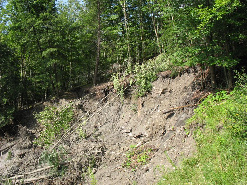 Buttermilk Cr landslide on east slope downstream of spillway culvert
